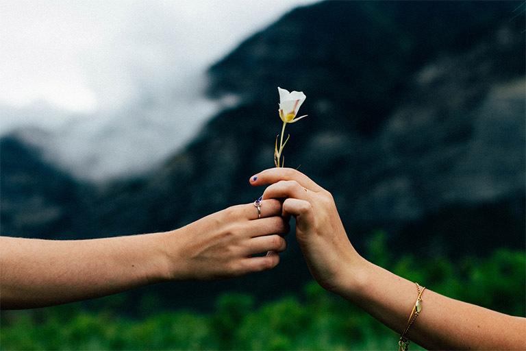 На картинке две женских руки, одна из которых передает цветок другой, с пожеланиями счастья.